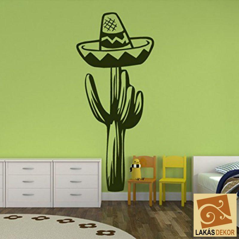 Kaktusz kalappal falmatrica