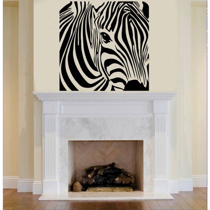 Zebra falmatrica 2