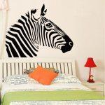 Zebra falmatrica 3