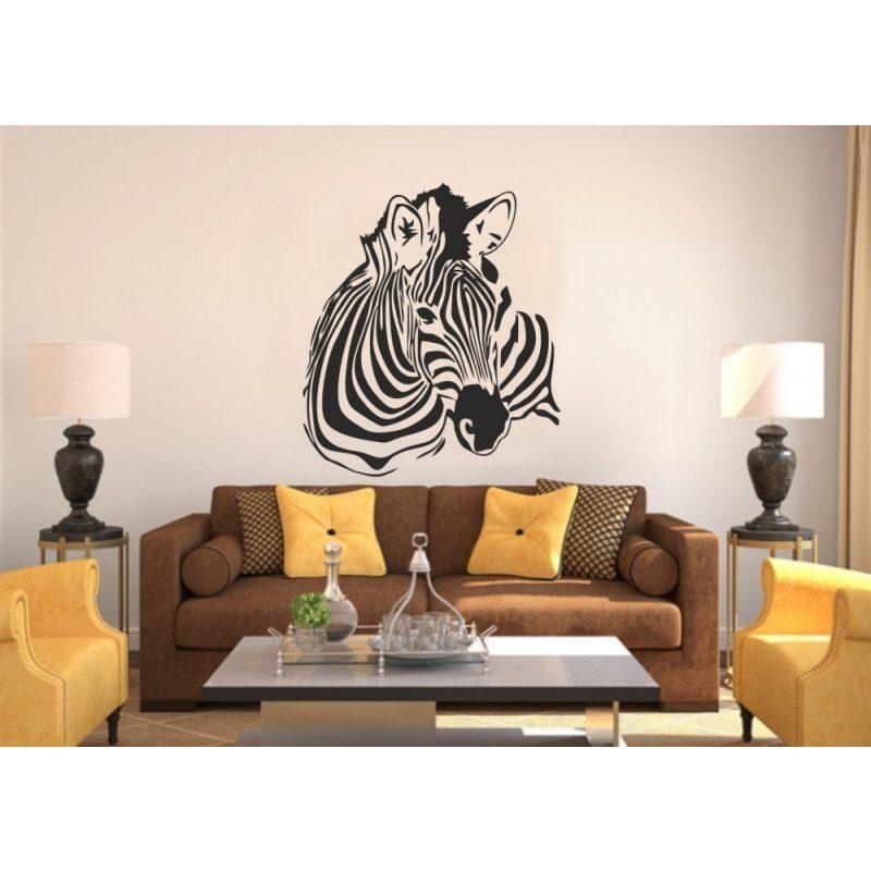 Zebra falmatrica 4