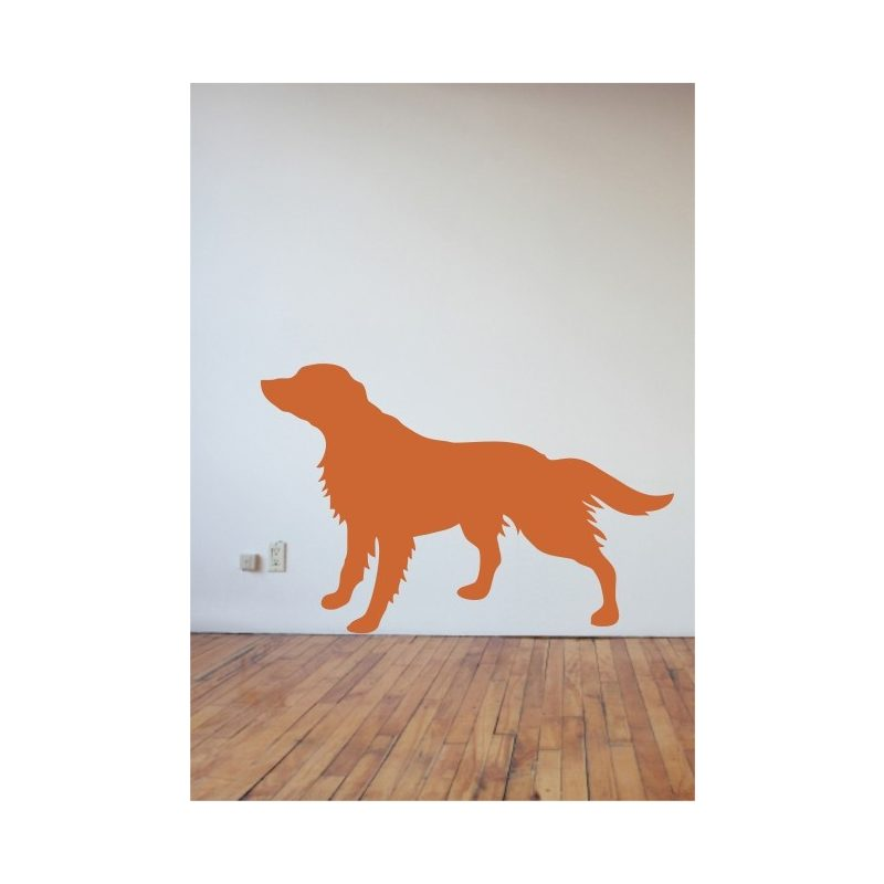 Kutya falmatrica