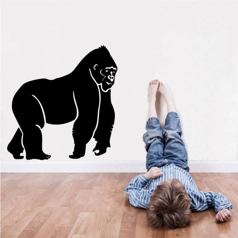 Gorilla falmatrica