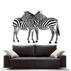 Zebrano falmatrica, Zebra