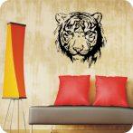 Tigrisfej falmatrica 2