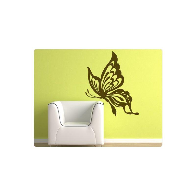 Pillangó falmatrica 17