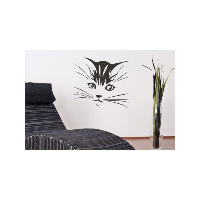 Macskafej falmatrica