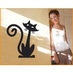 Maccs falmatrica 6, macska