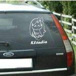 Autómatrica, Baba a kocsiban Kislányka
