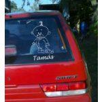 Autómatrica, Baba a kocsiban, Baby nyuszival