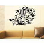 Leopárd falmatrica