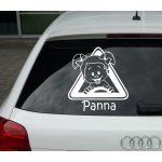 Autómatrica, Baba a kocsiban, Lányka 2 háromszögben