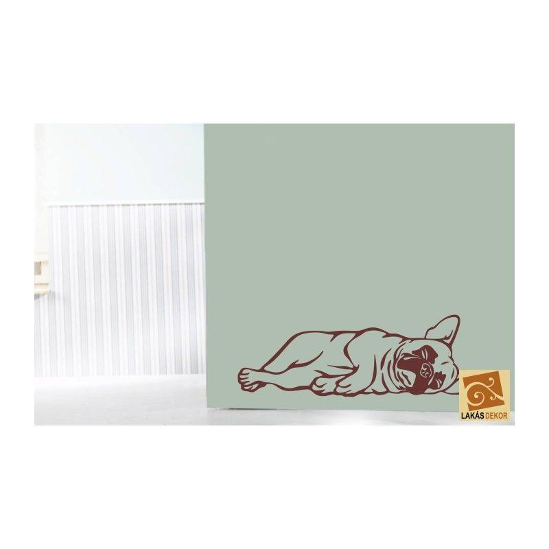 Francia Bulldog falmatrica 4