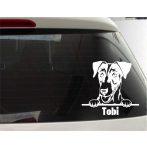Fox Terrier autósmatrica